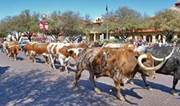 Image result for stockyard fort worth texas